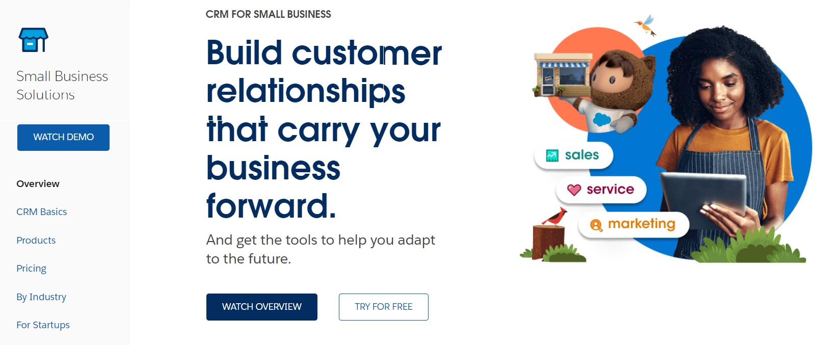 A screenshot of Salesforce's solution for small businesses.